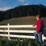 Man standing by a white fence