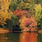 Find Time for Time Finder Favorites as We Welcome October!
