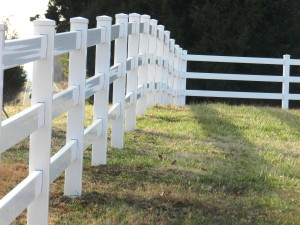 Fences and field
