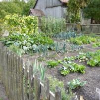 Your Garden