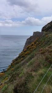 Irish Coast near Bray
