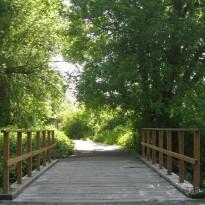 Railed Bridge-Time Boundaries