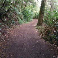 Pathway-goals