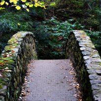 Bridge-Transitional Activities
