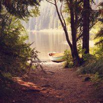 Nurturing Canoe Lake