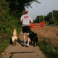 FitNotes Runner with Dogs