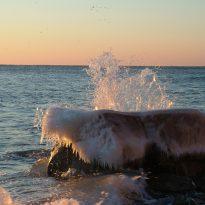 Ocean new beginnings