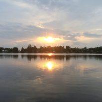nurturing environment sunset