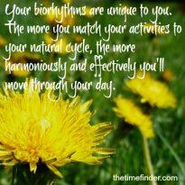 Biorhythms