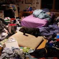organizing environment